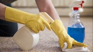 carpet cleaning rochester michigan
