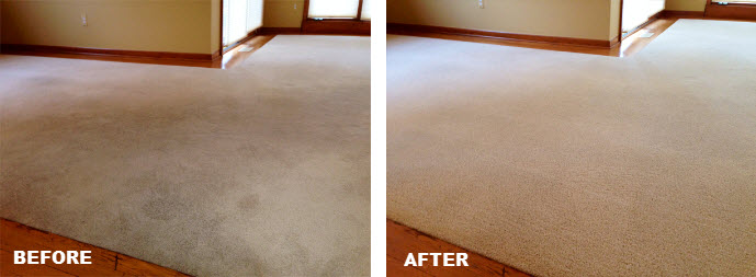 carpet cleaning clinton twp mi