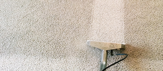 Troy, Michigan Carpet Cleaning