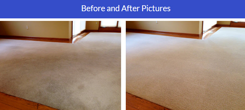 Clinton Township Carpet Cleaning