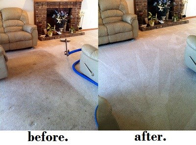 Macomb County Carpet Cleaners