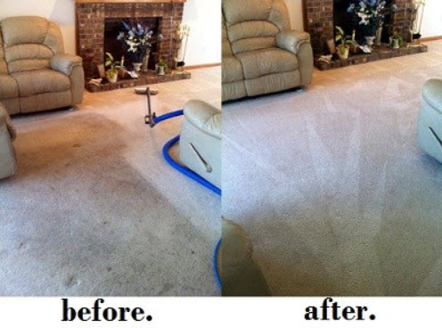 Macomb County Carpet Cleaning Service
