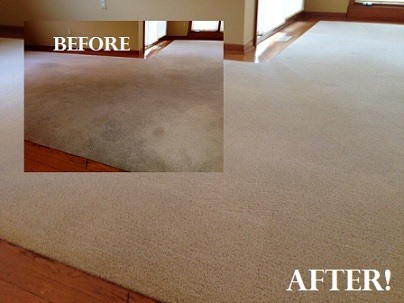 Shelby Township Carpet Cleaning
