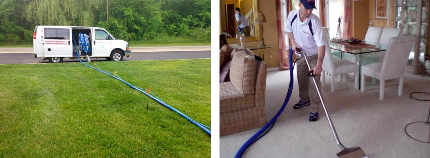 Macomb County Professional Carpet Cleaners