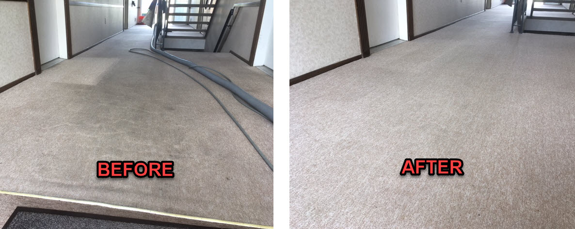 Macomb County Commercial Carpet Cleaners