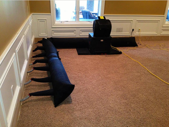 Macomb County Water Damage Experts